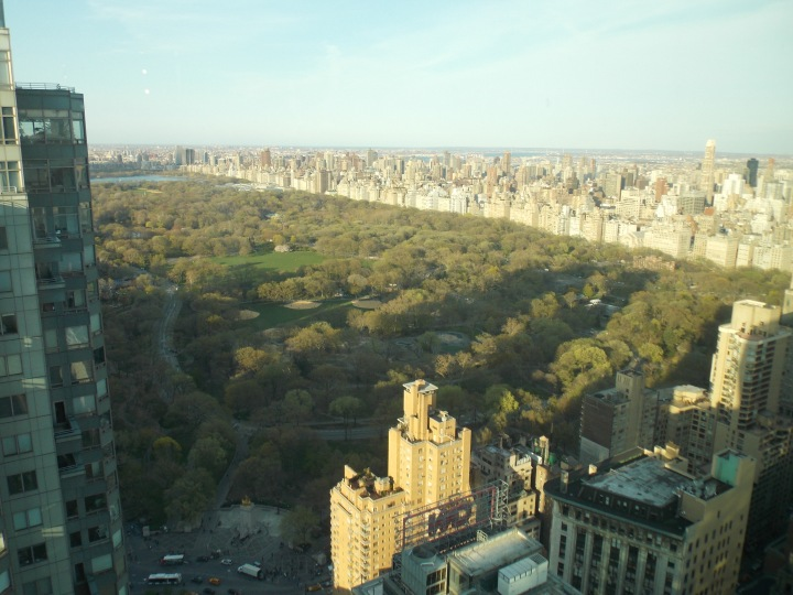 Central Park, 44 floors up!